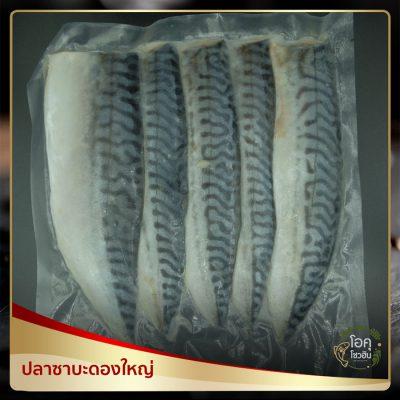 """ปลาซาบะดองใหญ่ """"โอคุโชวฮิน"""" ศูนย์จำหน่ายขายส่งวัตถุดิบซูชิทุกประเภท ทั้งขายส่งและขายปลีก"""