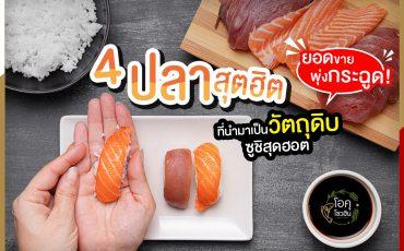 """4 ปลาสุตฮิตที่นำมาเป็นวัตถุดิบซูชิ1 """"โอคุโชวฮิน"""" ศูนย์จำหน่ายขายส่งวัตถุดิบซูชิทุกประเภท ทั้งขายส่งและขายปลีก"""